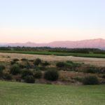 du Vlei view of vineyards